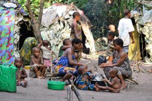 Pygmée Agir ensemble pour les droits humains